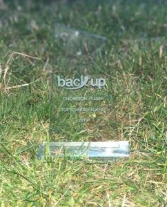 Statue of Back Up award