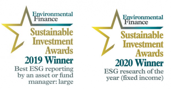 Sustainable investment awards