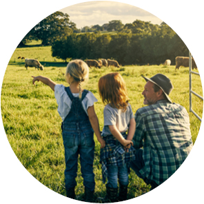 Child pointing on cows grazing on the field