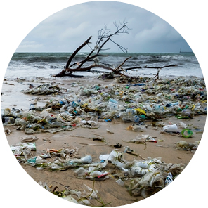 Landscape presenting polluted beach