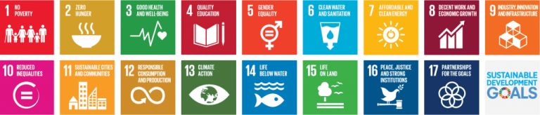 Icons of SDG