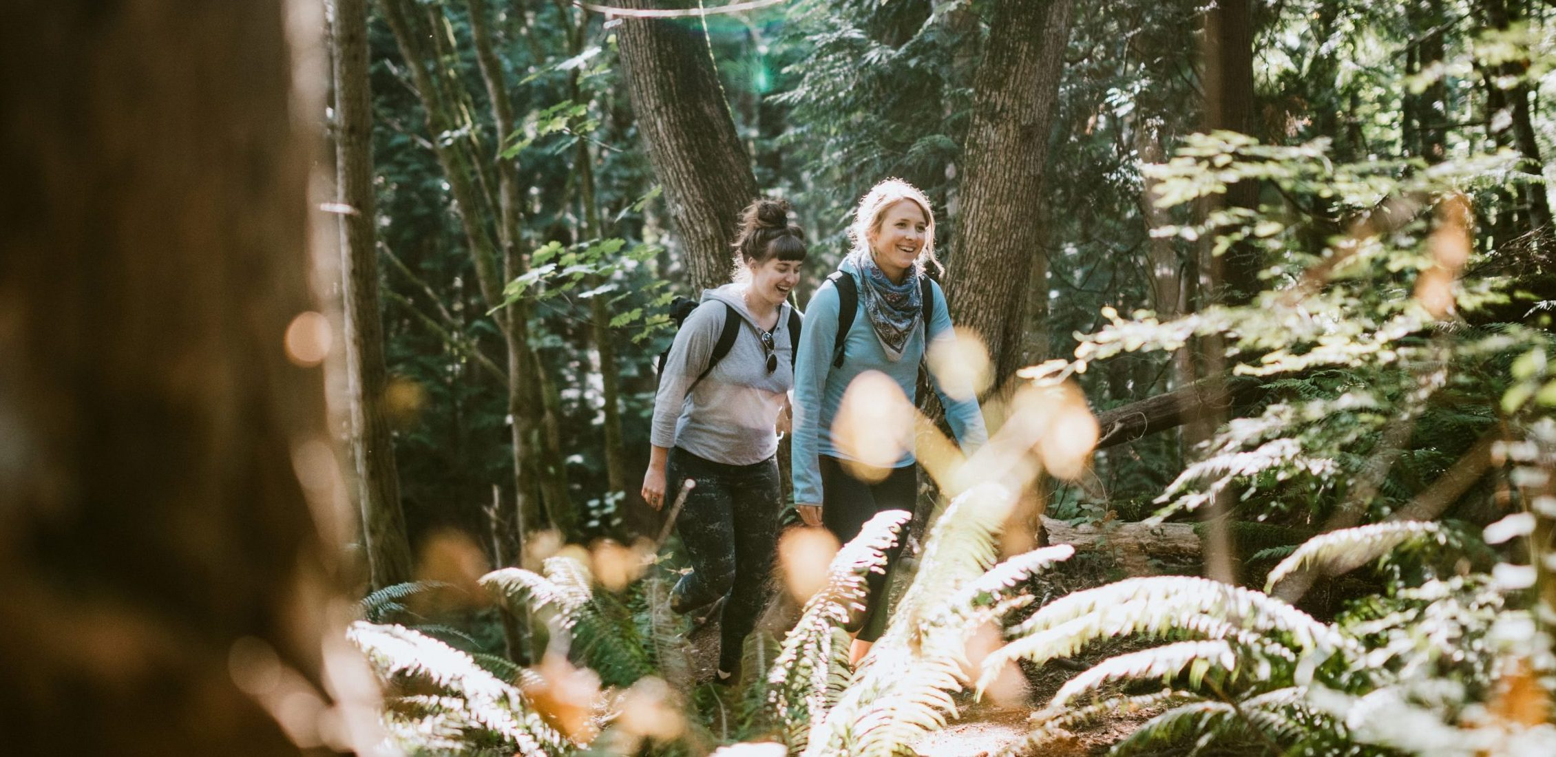 Two friends hiking in the forest