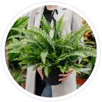 A woman is holding a fern in a pot